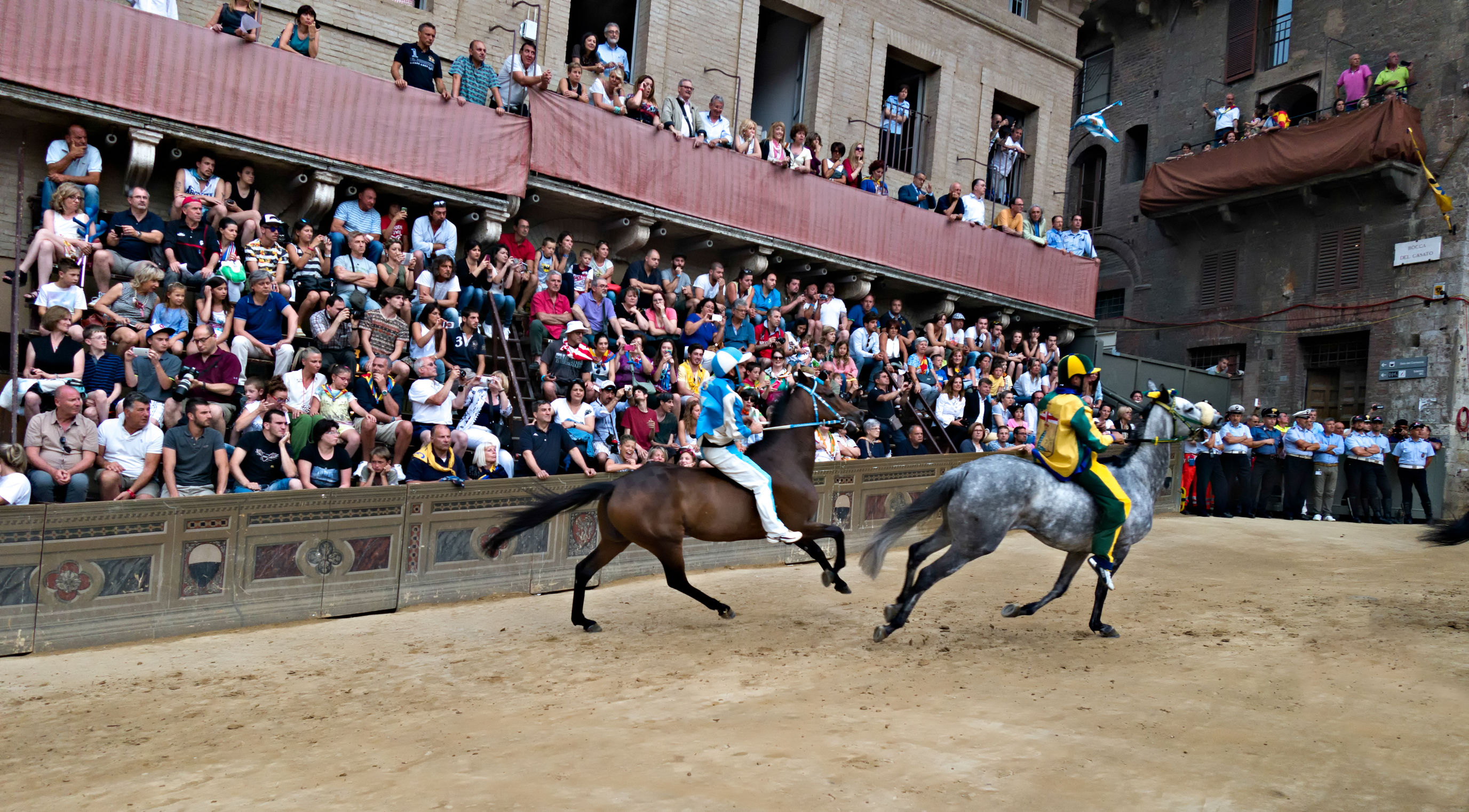 Horses, the Palio of Siena